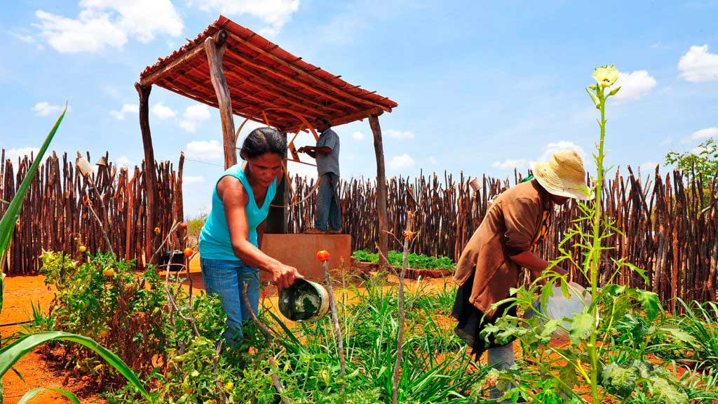 Mid-term evaluation of the Sustainable Rural Development Project in Bahia